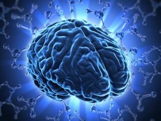 Повышаем активность мозга
